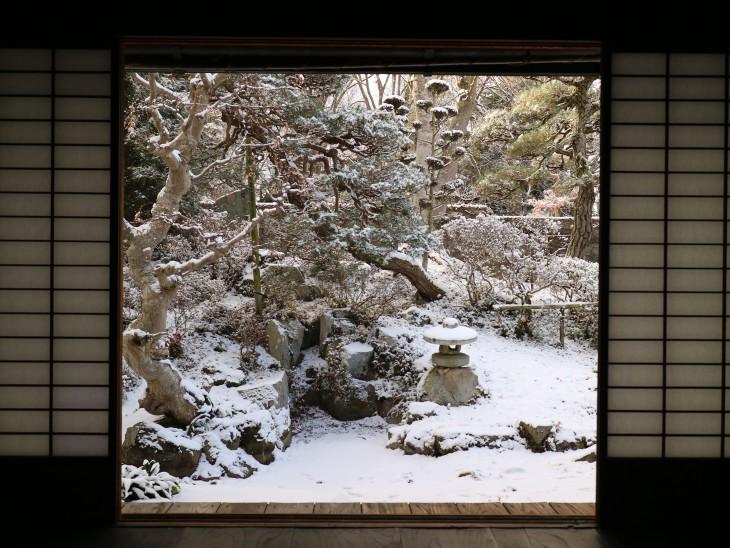 主屋から眺めた雪の坪庭