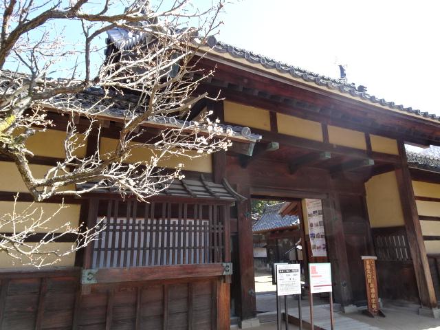 表門と門庭の梅