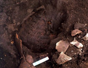 再葬墓の出土状況(針塚遺跡)