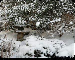 生家雪景色4