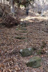 現地確認のため急な山道も 登ります。 前の千賀学芸員はサクサク登っていきます。