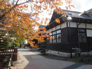 桜の葉っぱと旧松本区裁判所庁舎前