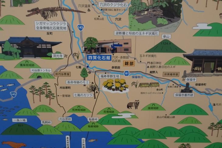 フクジュソウ群生地周辺地図(化石館四賀マップより抜粋)