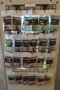 大人気の恐竜缶バッジ多数入荷しました。ぜひお求め下さい。