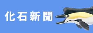 02化石新聞.cleaned