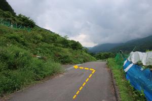 徳運寺から山手に向かうコンクリートの道